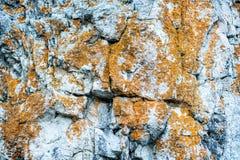 石头的纹理 图库摄影