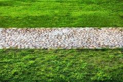 石头的路在绿色草坪中间的 免版税库存照片