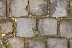 石头的路面 库存照片