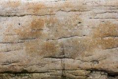石头的边 库存照片