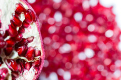 石榴红色水多的种子  免版税库存图片