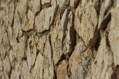 石头纹理 库存图片