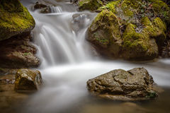 石头细节在溪的 免版税库存照片