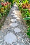 石头被铺的道路在一个热带庭院里 库存图片