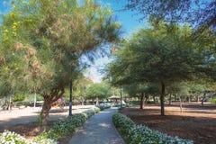 石头被铺的道路在一个热带庭院里 免版税库存照片