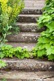石头跨步登高 库存照片