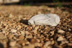 石头 库存照片