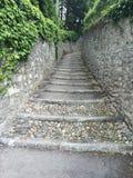石pathwalk 免版税库存照片