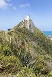 矿块点灯塔,在新西兰` s Catlins海岸的一个普遍的旅游目的地 库存照片