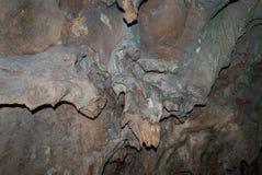 矿床的形式在Seplawan,印度尼西亚洞墙壁上的  免版税库存照片