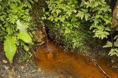 矿泉水的水源从博尔塞克的 库存图片