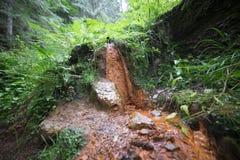矿泉水的水源在山的 库存照片