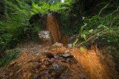 矿泉水的水源在山的 免版税图库摄影