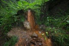 矿泉水的水源在山的 图库摄影