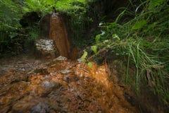 矿泉水的水源在山的 免版税库存图片