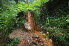 矿泉水的水源在山的 库存图片