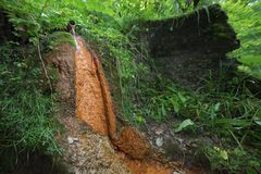 矿泉水的水源在山的 免版税库存照片