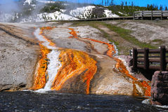 矿物和细菌瀑布 库存照片
