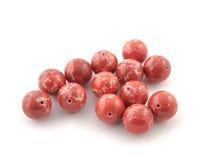 矿物在白色背景隔绝的岩石红色Variscite宝石 免版税库存照片