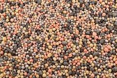 矿物肥料粒子 图库摄影