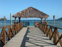 码头斐济 库存照片
