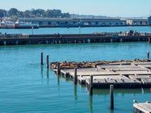 码头39渔夫的码头在旧金山,是一个著名旅游胜地 库存图片
