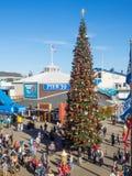码头39圣诞树 库存照片