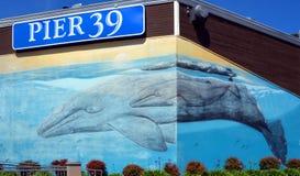 码头39威尔士壁画 免版税库存照片