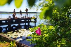 码头的青年人在夏天 免版税库存照片