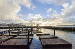 码头39,旧金山,加利福尼亚 免版税库存照片