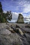 砂岩在石头后的岩石巨型独石在大教堂c的沙子 图库摄影