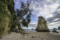 砂岩在石头后的岩石巨型独石在大教堂c的沙子 库存照片