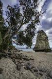 砂岩在石头后的岩石巨型独石在大教堂c的沙子 库存图片
