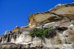 砂岩岩层,悉尼,澳大利亚 免版税库存图片