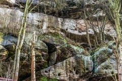 砂岩岩石在森林里 库存照片