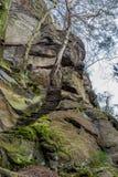砂岩岩石在森林里 图库摄影