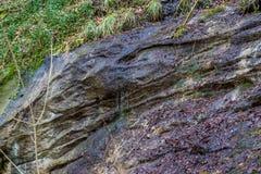 砂岩岩石在森林里 免版税库存照片