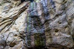 砂岩岩石在森林里 免版税图库摄影