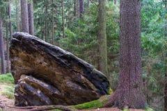 砂岩岩石在森林里 免版税库存图片