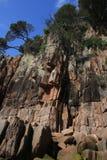 砂岩峭壁表面 库存图片