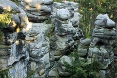 砂岩形成在云杉的森林里 免版税库存图片