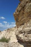 砂岩沉积分层了堆积与绿色植物的峭壁 免版税库存照片