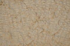 砂岩背景 免版税库存图片