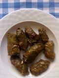 砂锅烹调希腊肉剁碎的moussaka蔬菜 叶子充塞了藤 免版税库存照片