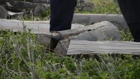 砍与一个轴的木材起重器细节木柴冬时的 关闭伐木工人分裂木头,农村场面 股票录像