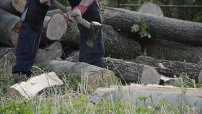 砍与一个轴的木材起重器细节木柴冬时的 关闭伐木工人分裂木头,农村场面 影视素材