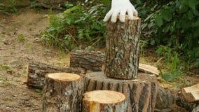 砍与轴的木头 影视素材