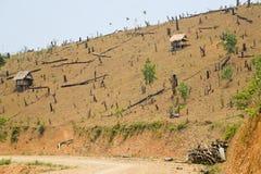 砍伐森林在老挝,切开雨林,赤裸地球 免版税图库摄影
