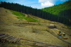 砍伐森林环境问题,为修造的手段毁坏的森林 库存照片