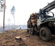 砍伐森林,采伐的产业 免版税库存图片